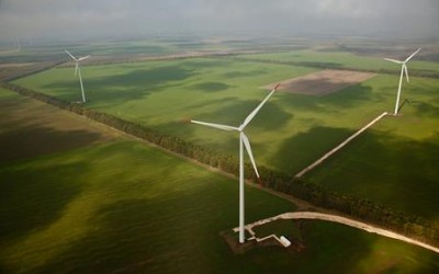 New Players needed for Green Growth – EGP CEO