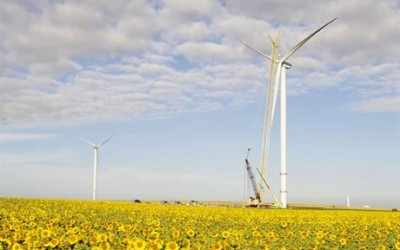 Blue Chip Firms call for Corporate Renewable PPA Boost in Stimulus Package